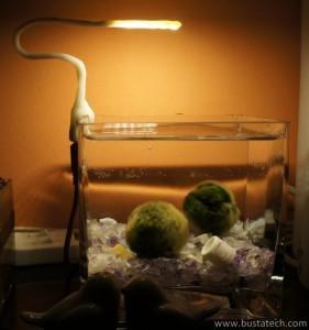 DIY USB Led d'aquarium : Vue globale